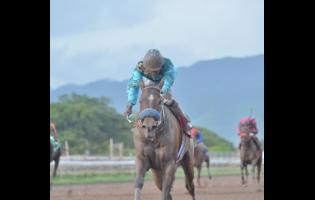 File Dane Nelson aboard Princess Ava gallops to victory in the Seymour Mullings  Trophy over 1600m at Caymanas Park on December 12, 2019.