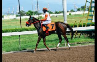 WEEKEND JAZZ, ridden by Oshane Nugent, wins the fourth race at Caymanas Park on Sunday, October 11.