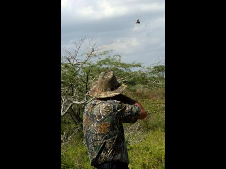 Court to summon minister in bird-shooting case   News